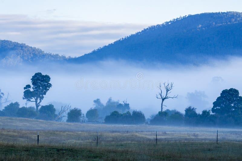 Nebelhafte Morgenbedeckungsberge lizenzfreie stockfotos