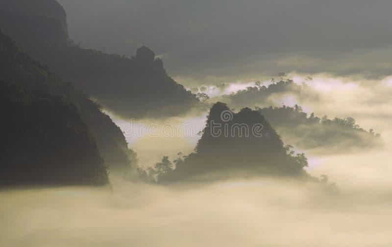 Nebelhafte Morgenlandschaft in Nord-Thailand, Phu Lang Ka, Phaya lizenzfreie stockfotos