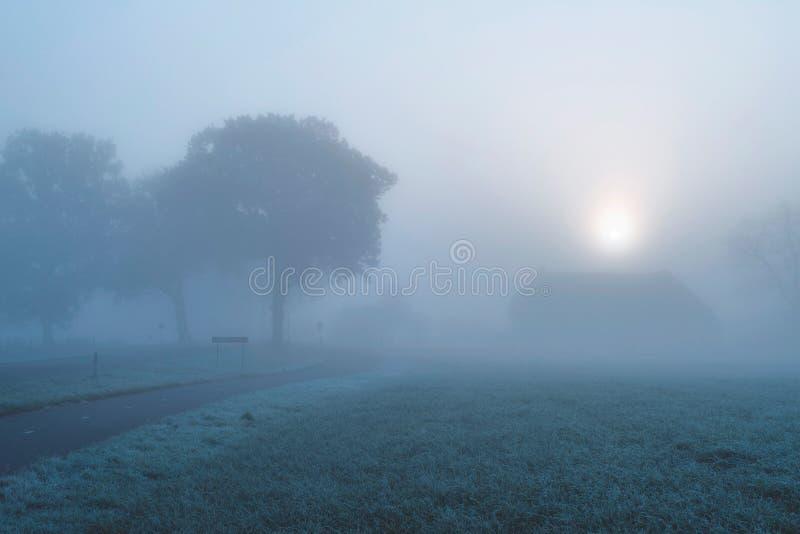 Nebelhafte niederländische ländliche Landschaft mit Bäumen und Bauernhof lizenzfreies stockfoto