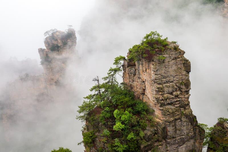 Nebelhafte steile Bergspitzen - Zhangjiajie-Staatsangehöriger lizenzfreies stockbild