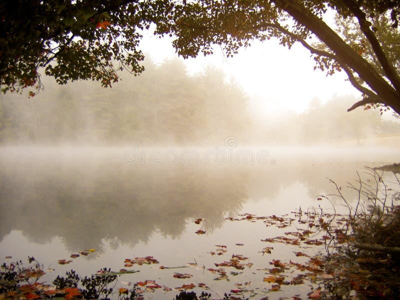 Nebelhafter Autumn See stockbild