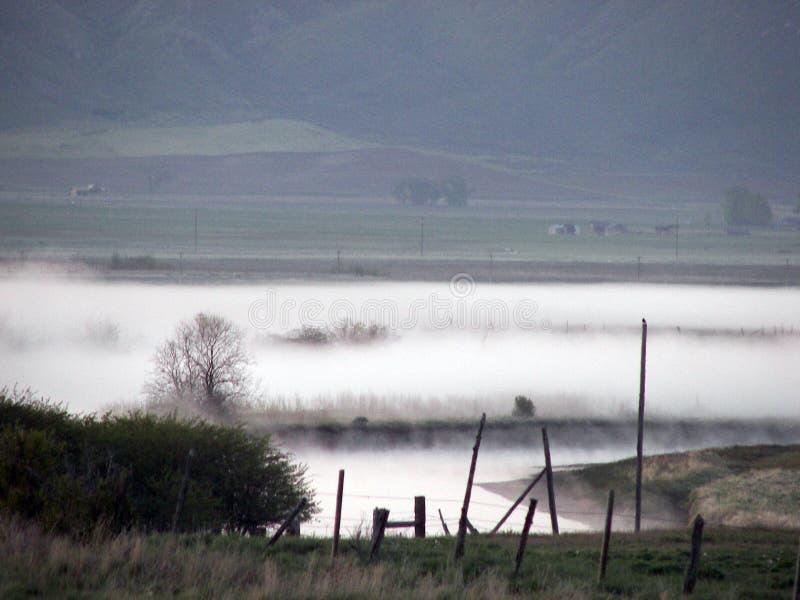 Nebelhafter Morgen lizenzfreie stockfotografie