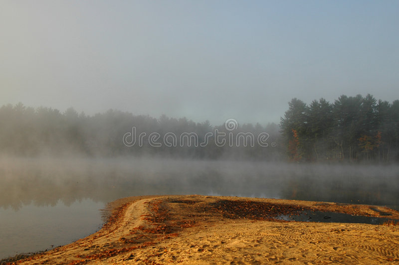 Nebelhafter Morgen stockfotografie