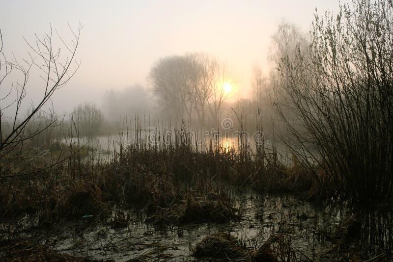 Nebelhafter Morgen auf dem Fluss d?mmerung stockfotografie
