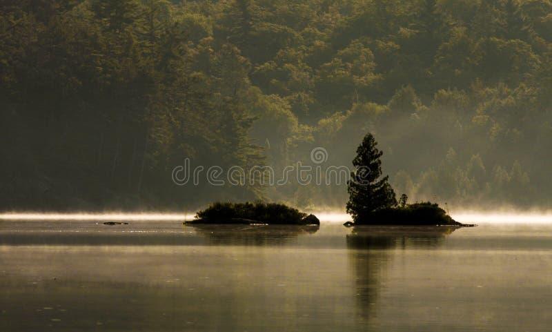 Nebelhafter Morgen auf dem See stockbild