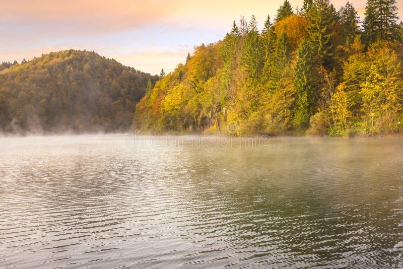 Nebelhafter Morgen auf Plitvice Seen lizenzfreies stockfoto