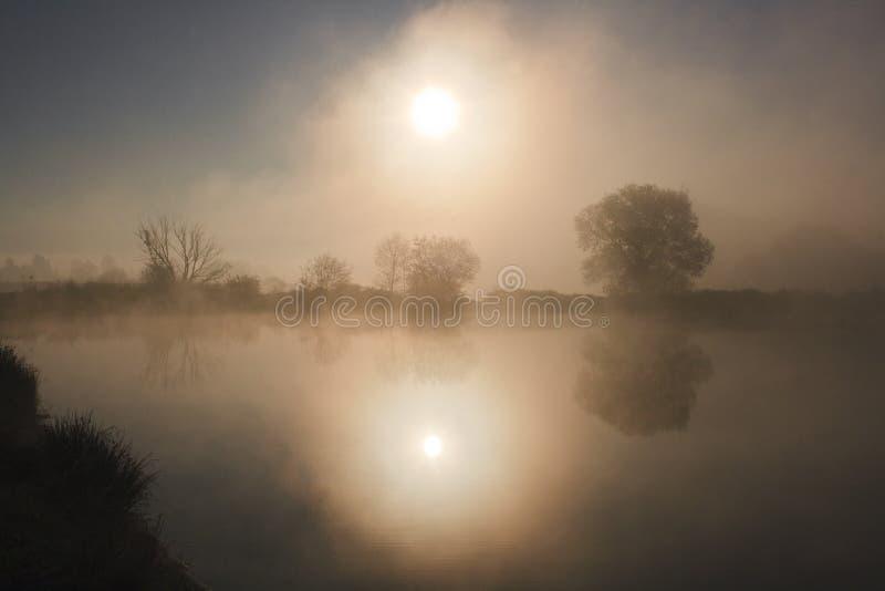 Nebelhafter Morgen in dem See stockfotos