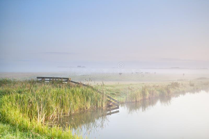 Nebelhafter Morgen im Ackerland stockfotos