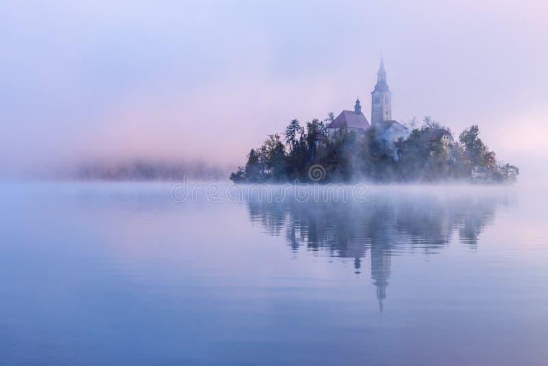 Nebelhafter Morgen im See geblutet stockfotografie