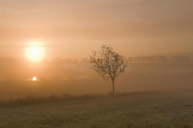 Nebelhafter Morgensonnenaufgang lizenzfreies stockfoto