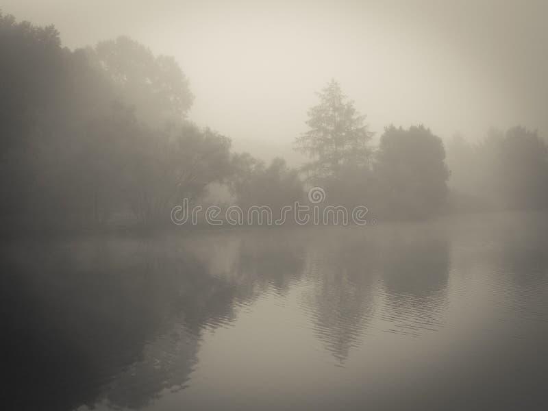 Nebelhafter Morning See lizenzfreies stockfoto