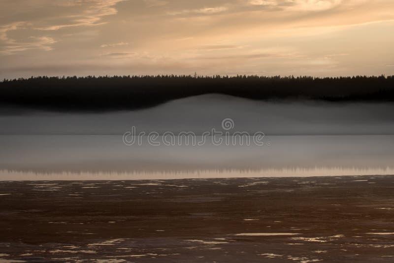 Nebelhafter ruhiger Abend auf dem Waldsee, Sonnenuntergang stockfotografie