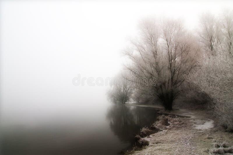 Nebelhafter See lizenzfreie stockfotos