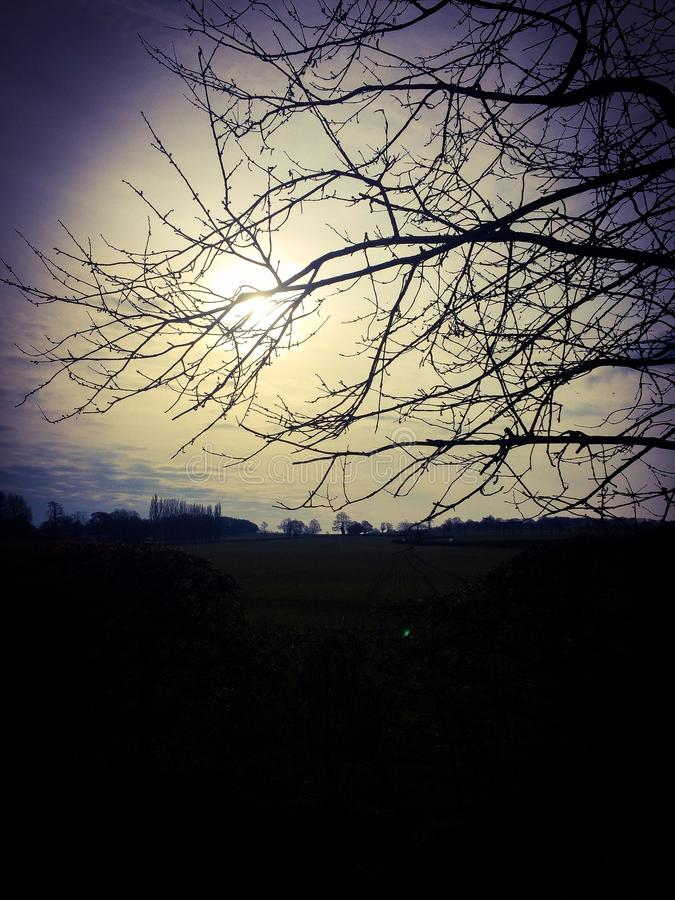 Nebelhafter Sonnenaufgang stockfotos