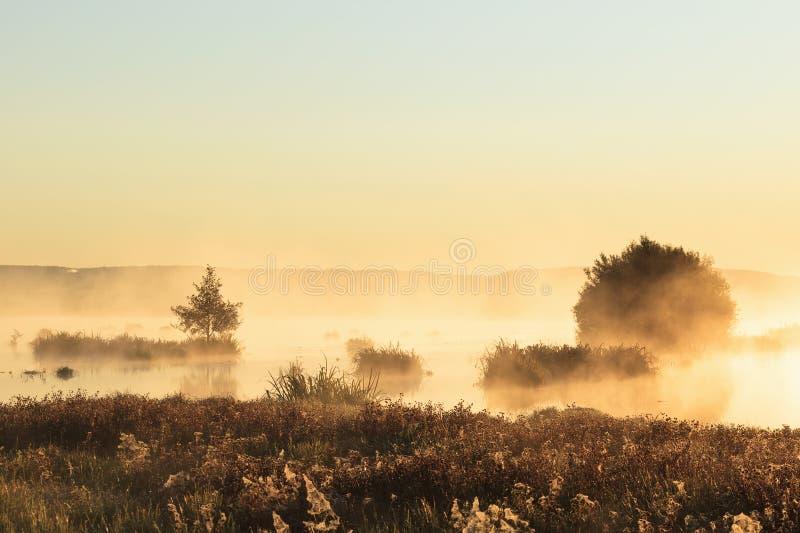 Nebelhafter Sonnenaufgang lizenzfreies stockbild