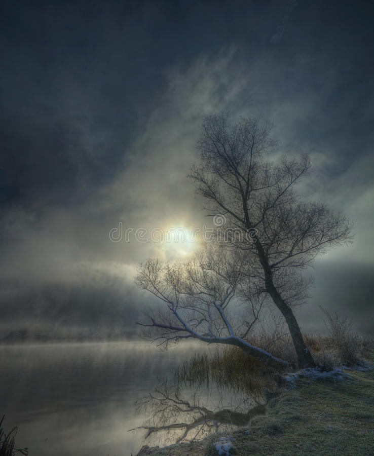 Nebelhafter Wintermorgen lizenzfreies stockfoto