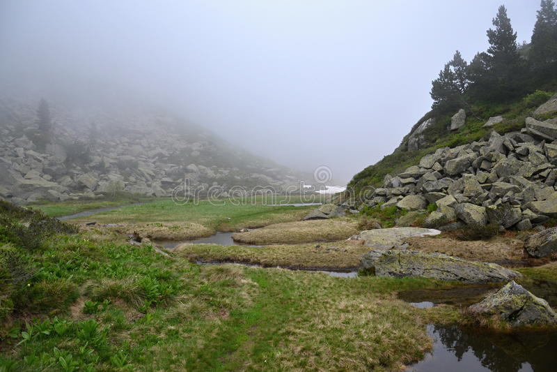 Nebelige Berge stockfotografie