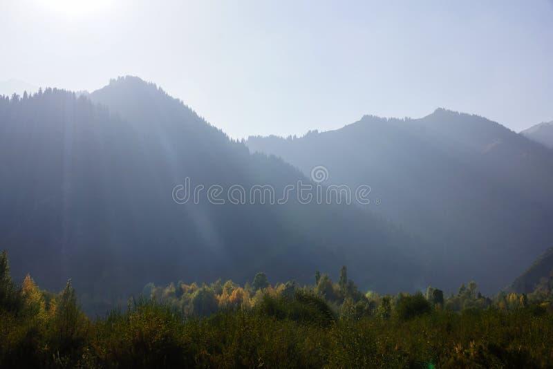 Nebelige Berge im Fall stockbilder