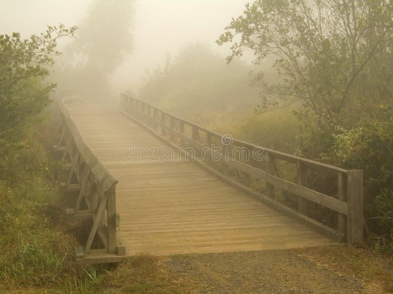 Nebelige Brücke Stockfotos