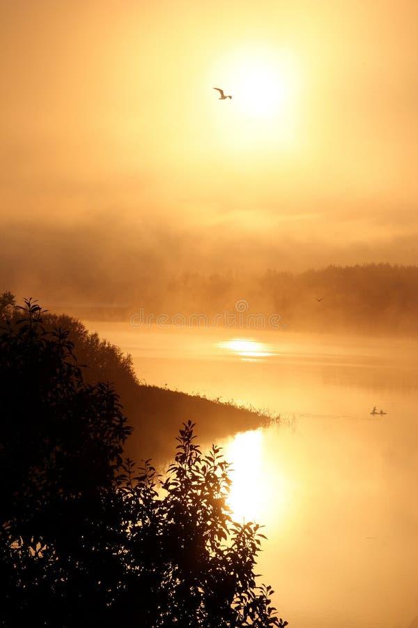 Nebelige Dämmerung auf dem Fluss stockbilder