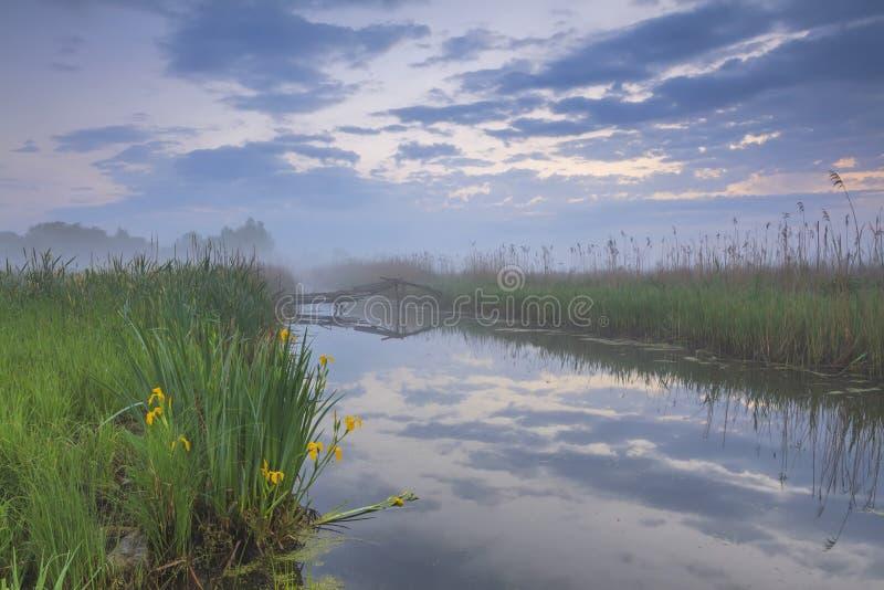 Nebelige Dämmerung auf dem Fluss stockfotos