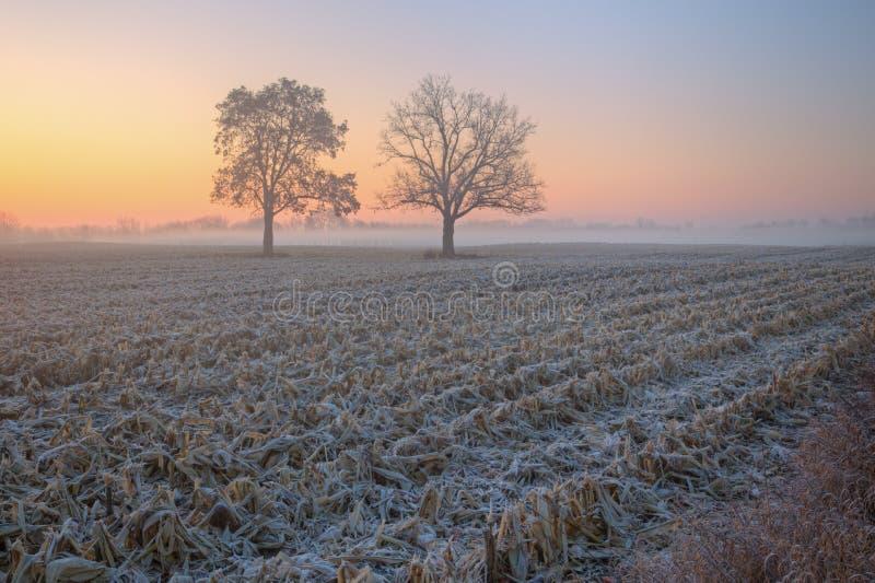 Nebelige Herbst-Landschaft lizenzfreie stockbilder