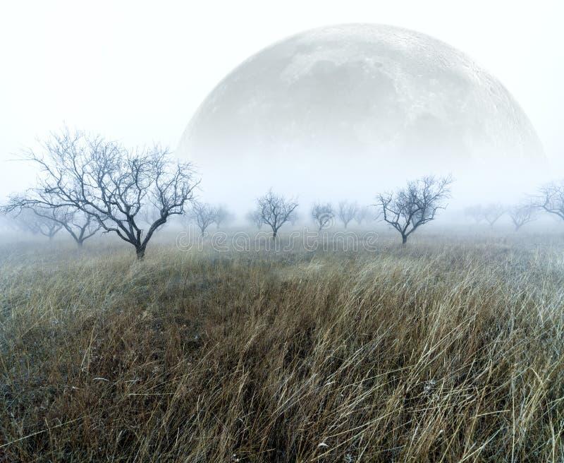 Nebelige Landschaft stock abbildung