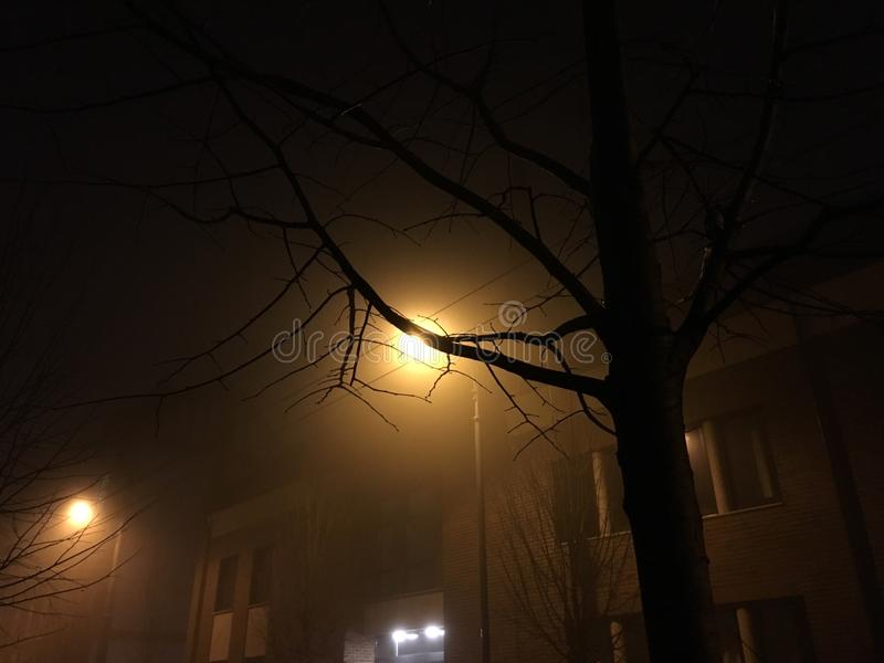 Nebelige Nacht bei Szeged stockfoto