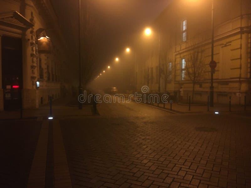 Nebelige Nacht bei Szeged lizenzfreie stockfotografie