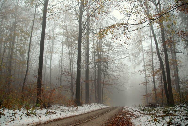 Nebelige Schneeszene lizenzfreies stockbild