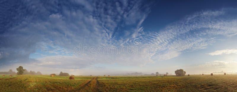 Nebelige Wiese am Herbstmorgen stockfoto