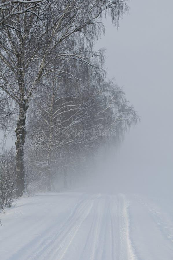 Nebelige Winterlandschaft lizenzfreies stockbild