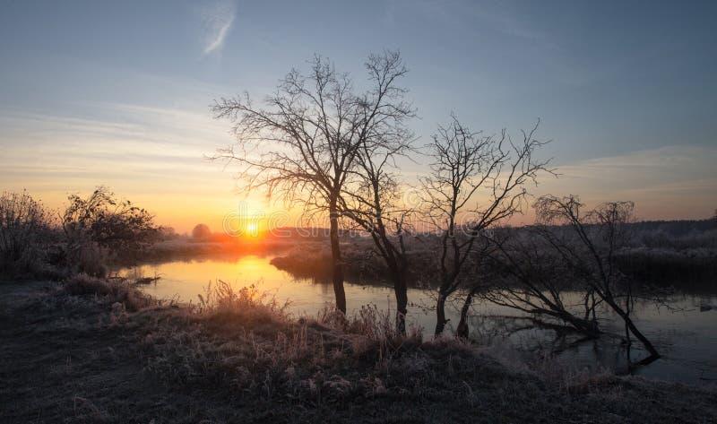 Nebeliger Herbstsonnenaufgang lizenzfreies stockfoto