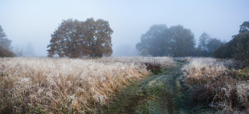 Nebeliger Herbstsonnenaufgang lizenzfreie stockfotos