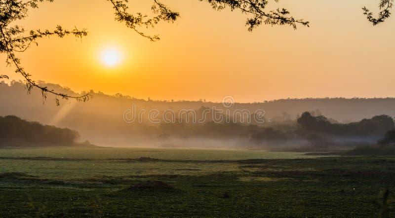 Nebeliger Morgen über dem See lizenzfreie stockfotografie