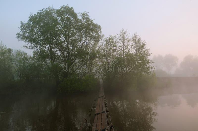 Nebeliger Morgen D?mmerung au?erhalb der Stadt Die Br?cke ?ber dem Fluss stockfotografie