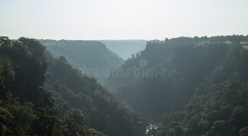 Nebeliger Morgen am grünen Tincha-Fall-Tal nahe Indore-Indien lizenzfreie stockfotografie
