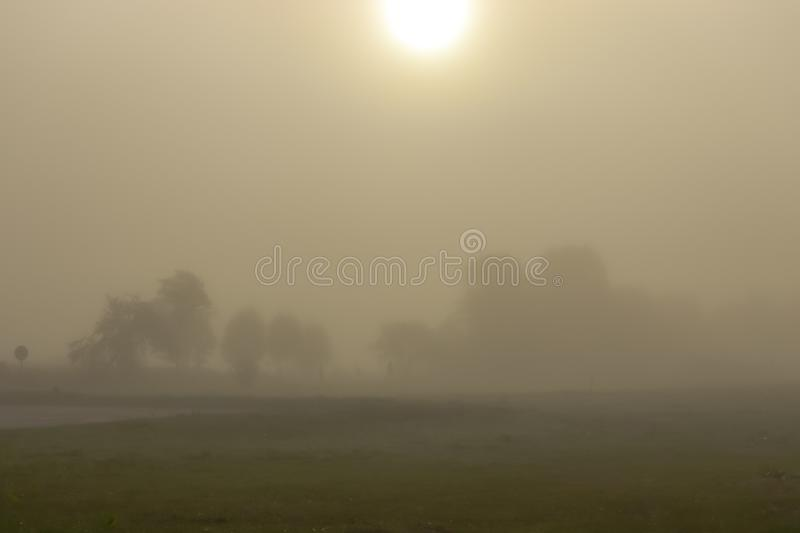 Nebeliger Morgen Septembers stockfotografie