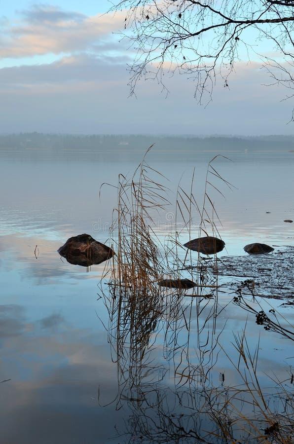 Nebeliger Morgen am Ufer stockbild