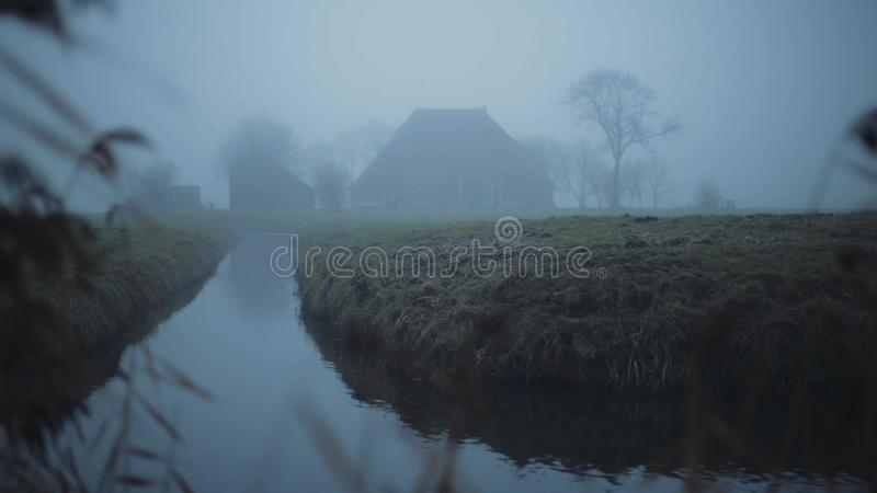 Nebeliger niederländischer Bauernhof auf einem Grün und Feuchtwiese gestalten im Winter landschaftlich Mit Schilf im Vordergrund stock video