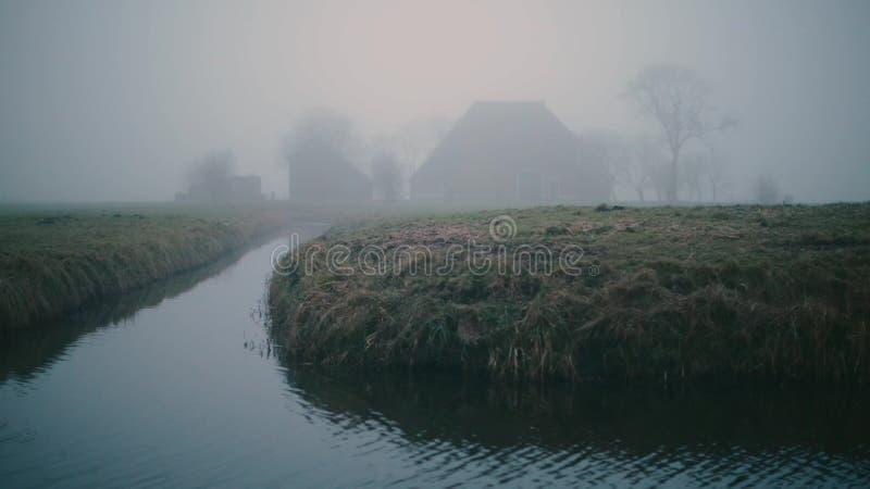 Nebeliger niederländischer Bauernhof auf einem Grün und Feuchtwiese gestalten im Winter landschaftlich Mit Schilf im Vordergrund stock footage