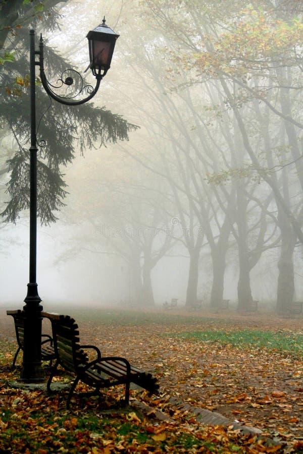Nebeliger Park morgens lizenzfreies stockbild