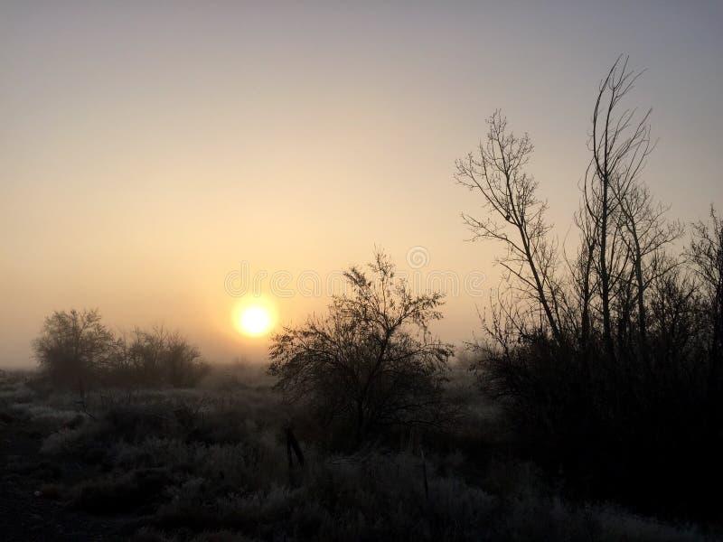 Nebeliger Sonnenaufgang lizenzfreie stockfotografie