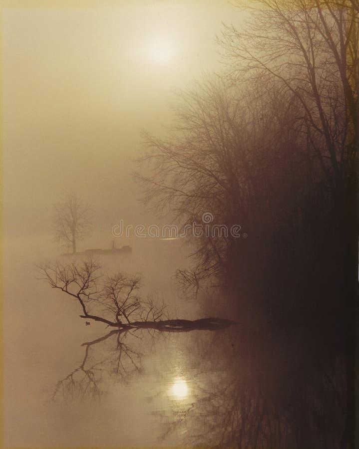 Nebeliger Sonnenaufgang stockbilder