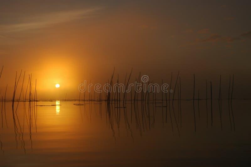 Nebeliger Sonnenaufgang lizenzfreies stockbild