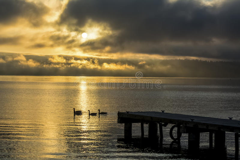 Nebeliger Sonnenaufgang auf Lake Washington, Staat Washington lizenzfreies stockfoto