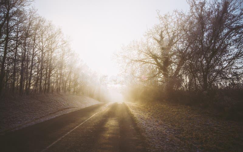 Nebeliger und eisiger Morgen des Winters mit Straße stockbild