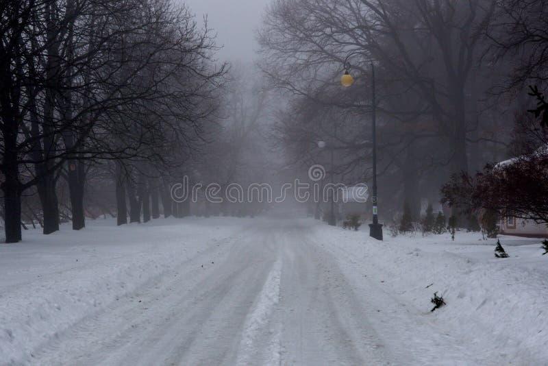 Nebeliger Wintermorgen in einem Stadtpark mit schneebedeckten Gassen lizenzfreies stockbild