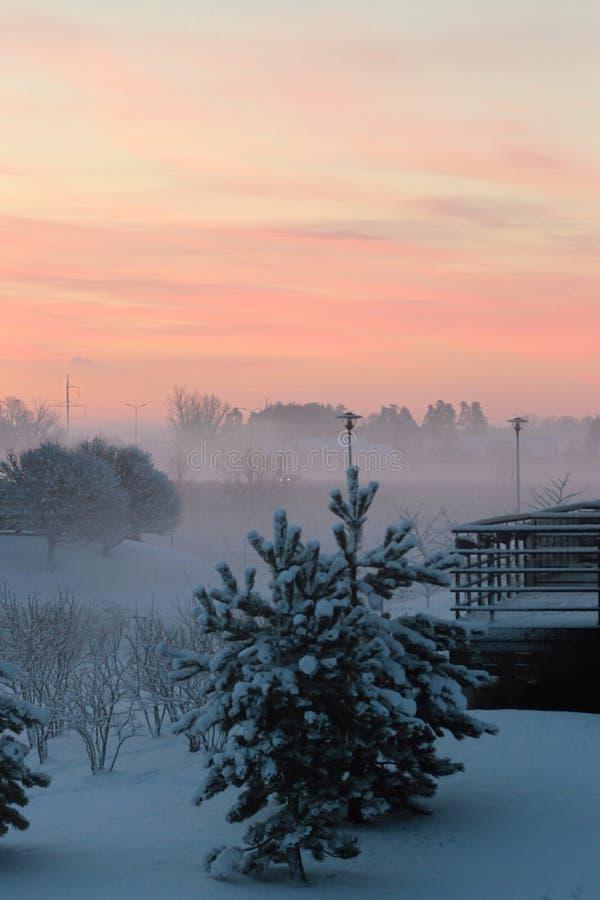 Nebeliger Wintermorgen mit einem Baum lizenzfreies stockbild