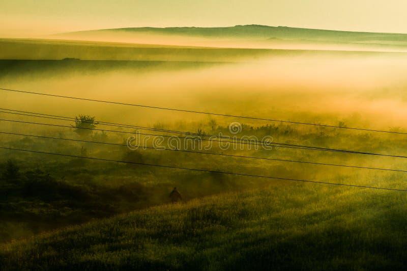 Nebeliges Feld stockfoto